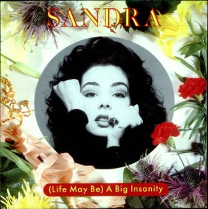 Sandra+Life+May+Be+A+Big+Insanity+34546