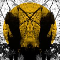 feelitbreak-austra